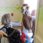 pet therapy at George Mark Children's House